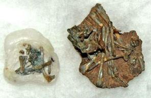 化石.jpg